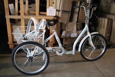 Zoll Erwachsenen Dreirad Shoppingrad Seniorenrad Frankfurt
