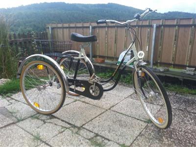 behinderten fahrrad Wichte
