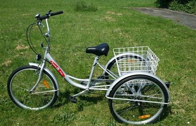 Damen Fahrrad Dreirad 26 Zoll Waghaeusel
