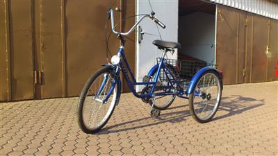 Dreirad Erwachsene Shopping Behinderten Fahrrad fahrbereite Lieferung Greifswald