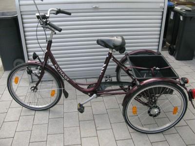 Dreirad Erwachsener Dreirad