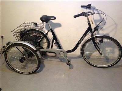 Dreirad fuer Erwachsene Senioren Behinderten Shopping Therapierad Eschau