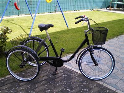 Dreirad fuer Erwachsene Senioren Fahrrad Lastenfahrrad Behindertendreirad 24 Zoll Braunfels