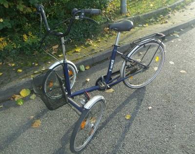 Dreirad fuer erwachsene Therapie Fahrrad Stuttgart