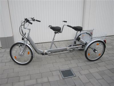 Dreirad Pedelec Tandem Elektrofahrrad Ludwigshafen
