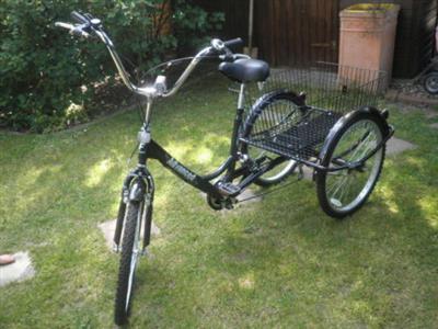 Dreirad Seniorenrad Lastenrad Fast Neu Dortmund