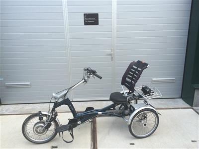 Elektrisches Therapeutisches van Raam easy Rider Dreirad Liegerad Elektromotor Ahaus