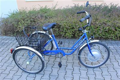 elektro dreirad weileder behinderten dreirad power cycl. Black Bedroom Furniture Sets. Home Design Ideas