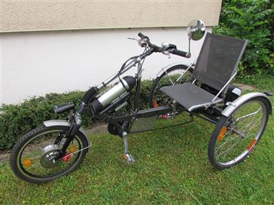 elektrofahrrad dreirad fahrrad dreirad schorndorf archiv. Black Bedroom Furniture Sets. Home Design Ideas
