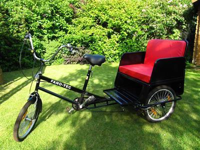 Fahradrikscha Transportrad Dreirad mit Staufach neuwertig nur 2 Probefahrten Berlin