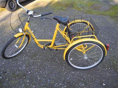 Fahrrad Dreirad fuer Erwachsene Behindertenrad ...