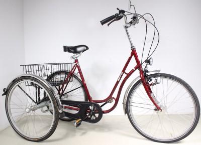 HAVERICH 26 34 DREIRAD Therapeutisches Therapie Fahrrad Erwachsene A277  Holthusen