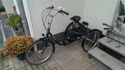 HAVERICH DREIRAD Behindertengerechtes Fahrrad Duesseldorf