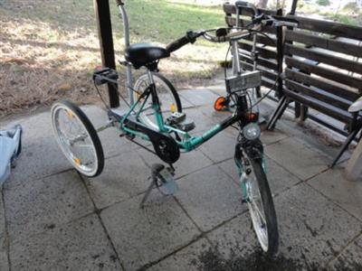 HAVERICH Kinder Dreirad Fahrrad therapeutisches Reha Rad Modell 24 Zwickau