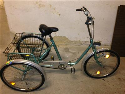 Kynast Sport 8 Luxus Dreirad Dreiradfahrrad Fahrrad Sulzbach Rosenberg