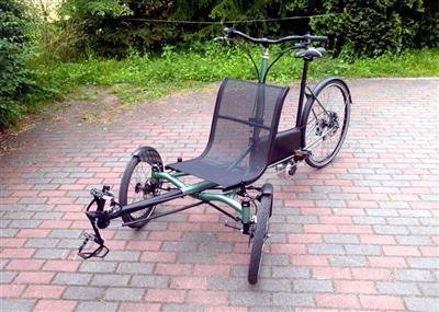 Liegerad Elektrofahrrad Pedelec dreirad fuer erwachsene Lastenrad Reha Tandem Muenster