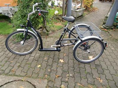 Pfau Tec Senioren Dreirad Behindertenrad Shoppingrad 7Gang mit Narbendynamo Hille