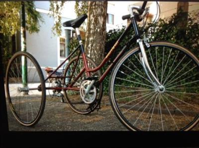 Rennrad Erwachsenen Dreirad Behindertendreirad Therapierad Seniorenfahrrad Meckenheim