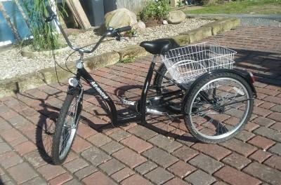 Seniorenfahrrad Behindertenfahrrad 24 Dreirad Vechelde