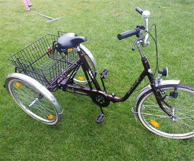 Seniorenrad Damenrad Herrenrad Dreirad 24 Zoll 3 Gang Bamberg
