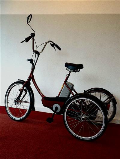 Therapeutisches Dreirad Nijland Sunny Easy Pas Elektrisch Pedelec Utrecht