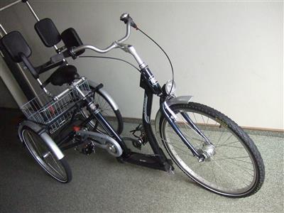 Therapeutisches Senioren Erwachsenen Dreirad PFAU Tec Classic kaum gebraucht Wendtorf