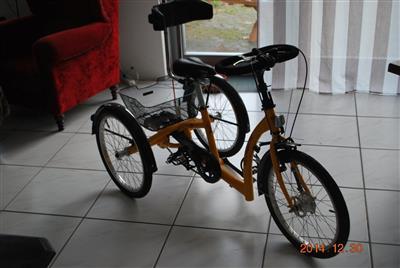 Therapie Fahrrad 2 2 x 1 75 Dreirad Momo Schuchmann mit Extras Burweg