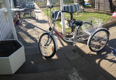 Therapierad Behindertendreirad Dreirad fuer Erwachsene Lastenfahrrad Frankfurt