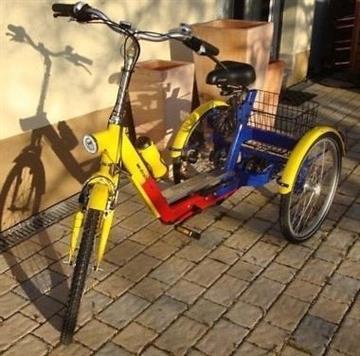TRICI Das Standard Therapie Dreirad bis zu 175 kg belastbar Schwalbach
