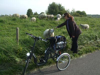 Holland2011_232_1600x1200
